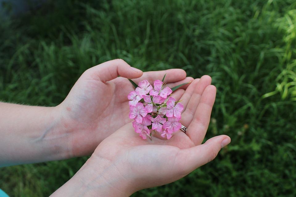 День левши отпразднуют в Новофедоровском. Фото: pixbay.com