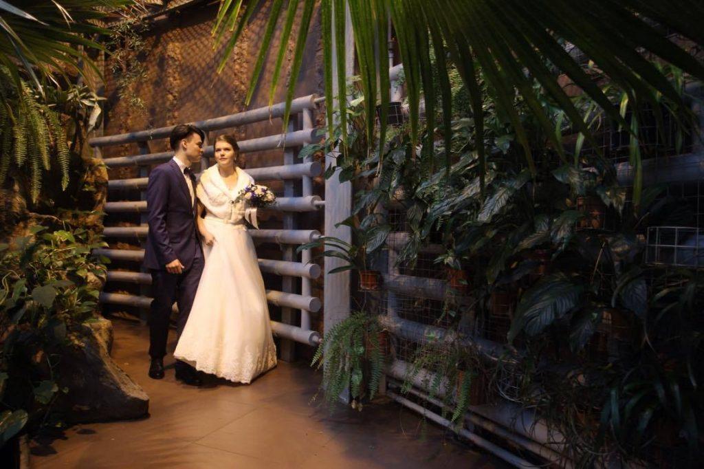 В зоопарке провели первую церемонию бракосочетания