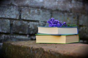 Читателей ждет тематическая викторина. Фото: pixabay.com