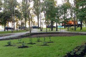 Улицы Высотная и 40 лет Октября в Щербинке дополнительно озеленили. Фото: администрация Щербинки