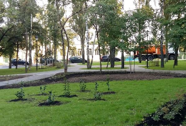 Дополнительный этап озеленения улиц завершился в Щербинке