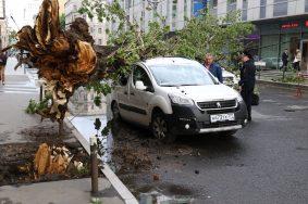 Водителей в Москве предупредили о сильном ветре
