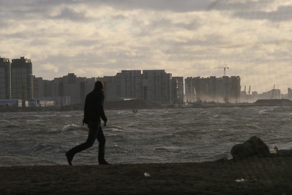 Москву предупредили о шторме до вечера