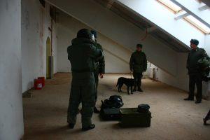 Подвалы и чердаки проверили в Кленовском. Фото: Иван Петров, «Вечерняя Москва»