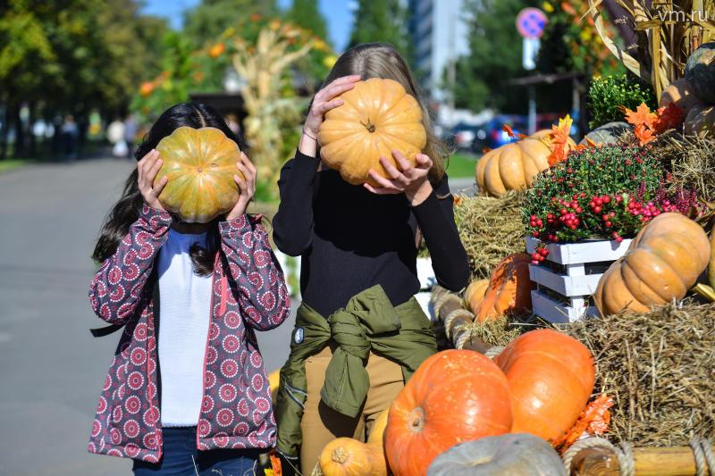 Овощи фестиваля «Золотая осень» в Москве отдали на корм животным