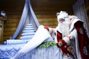 Выставка ко дню рождения Деда Мороза откроется в Марушкинском. Фото: архив, «Вечерняя Москва»