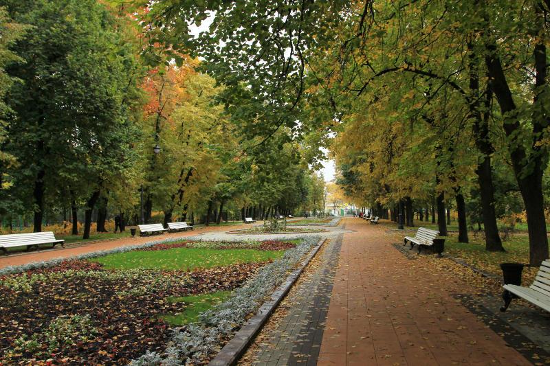 Похолодание придет в Москву 19 октября