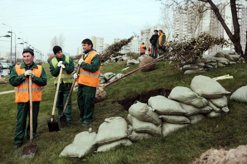 Около ремонтируемой дороги в Роговском выровняют землю и положат новый газон