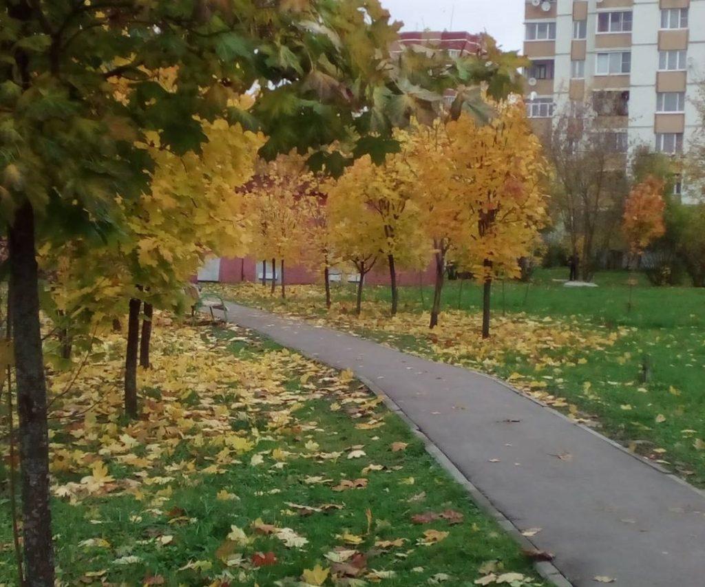 Количество участников фотоконкурса «Осенний отдых» увеличивается