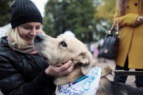 Ученые из Швеции: Владельцы собак живут дольше всех
