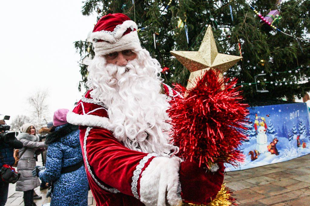 Композиция из светодиодных елей появится в Десеновском к Новому году