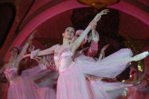 Балет «Дюймовочка» покажут в День матери в Сосенском. Фото: Антон Гердо