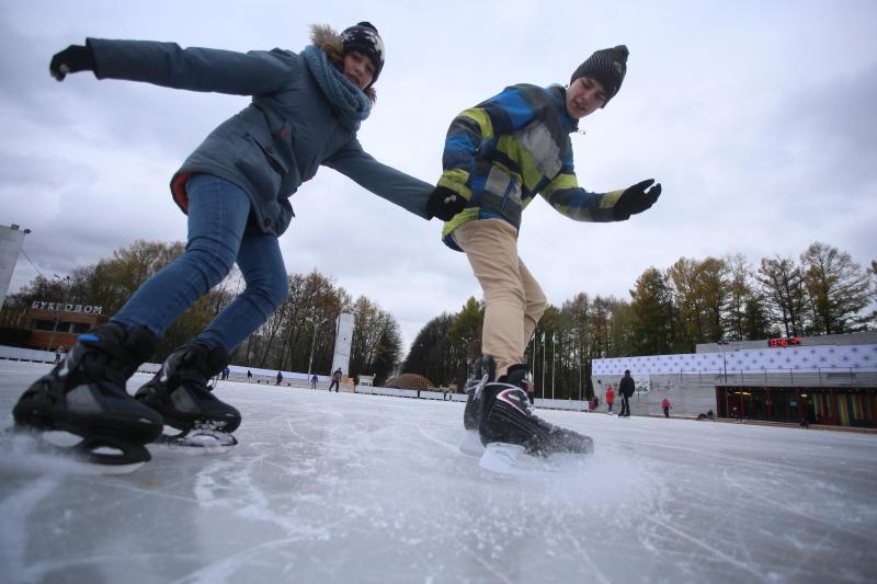 Более 30 катков с естественным льдом откроется в Новой Москве