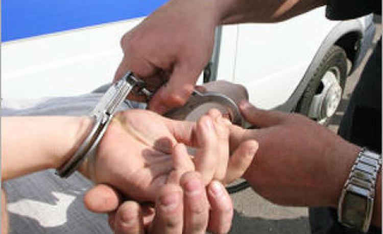 Полицейские Новой Москвы задержали подозреваемых в краже