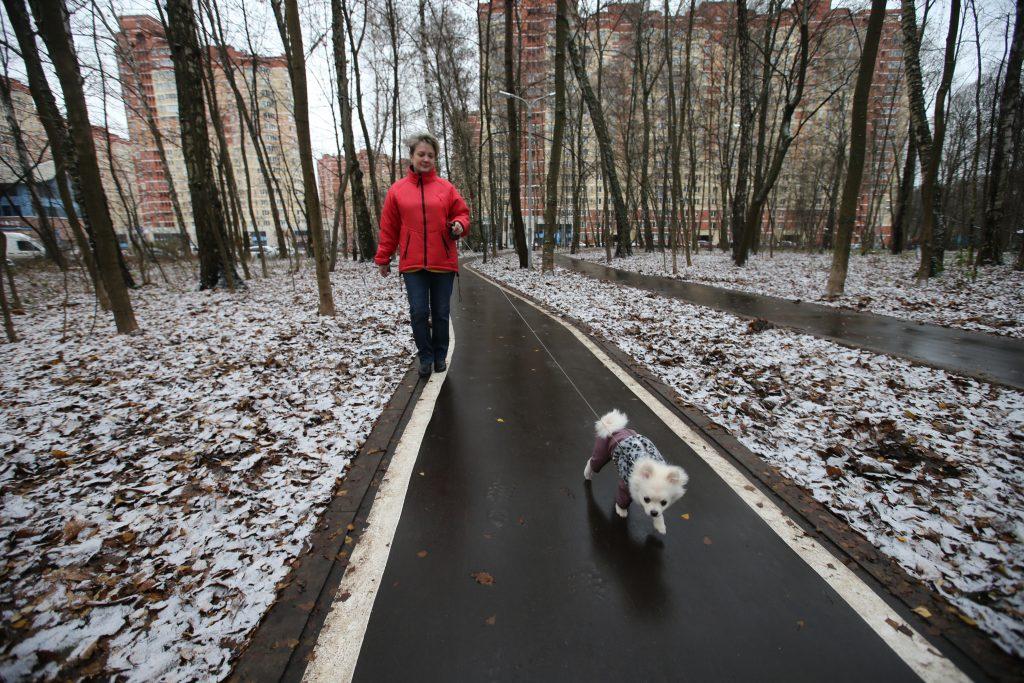 Участникам голосования предстоит выбрать самый благоустроенный парк. На победу претендует народный парк в Московском. Фото: Владимир Смоляков
