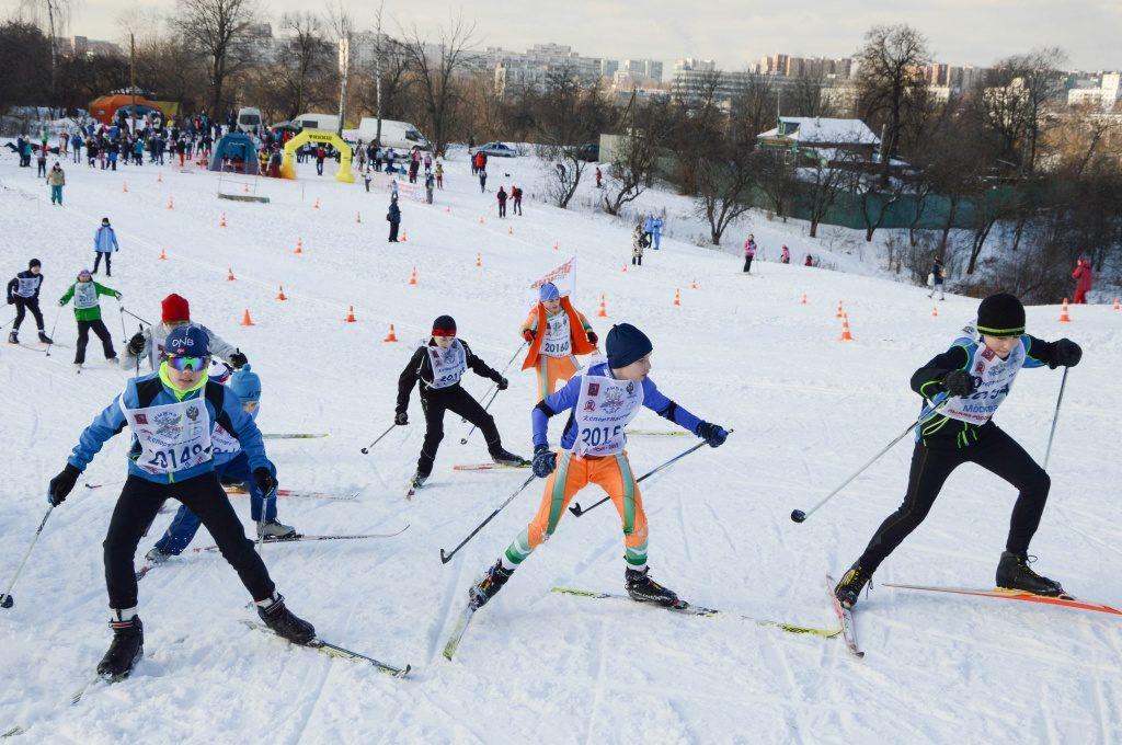 Порядка шести тонн щепы завезли в Кленовское для возведения лыжной трассы