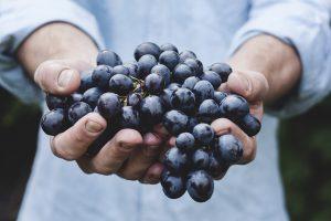Всего 12 виноградинок нужно испанцу для исполнения желания. Фото: pixabay.com