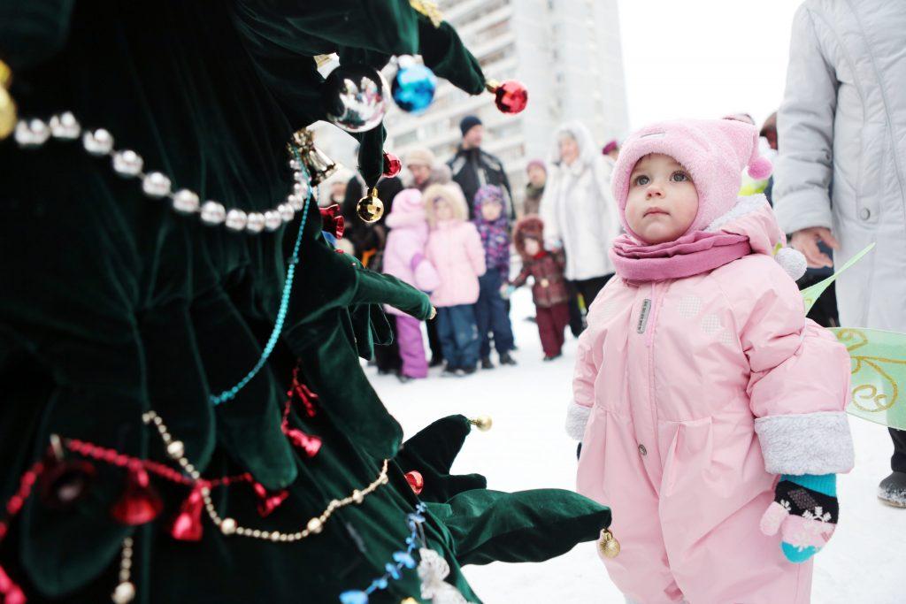 Автора лучшего новогоднего снимка наградят 14 января