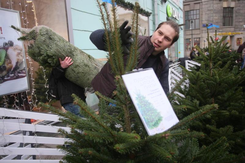 Животным Московского зоопарка подарили нераспроданные елки