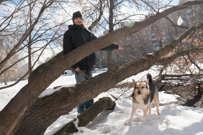 Количество случаев заражения животных бешенством в Москве снизилось втрое