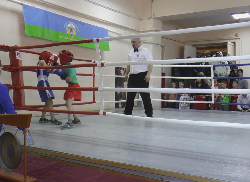 Представители Совета депутатов открыли турнир по боксу в Щербинке. Фото: страница газеты «Щербинский Вестникъ» в социальных сетях