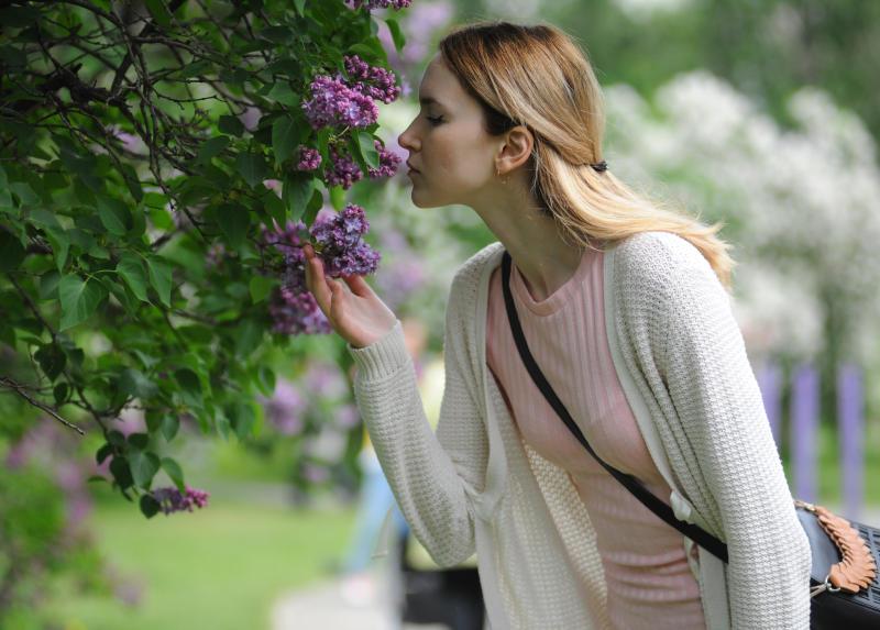 Высадку 250 деревьев организовали во Внуковском