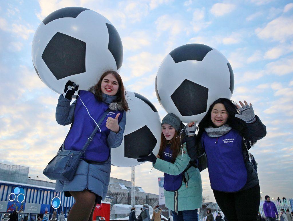 Сборные Германии и Туниса по футболу остановятся в Новой Москве. Фото: архив, «Вечерняя Москва»