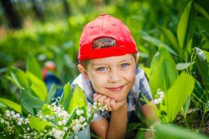 Ландыш — маленький скромный цветок, с которым связано множество легенд и поверий. Фото: Shutterstock