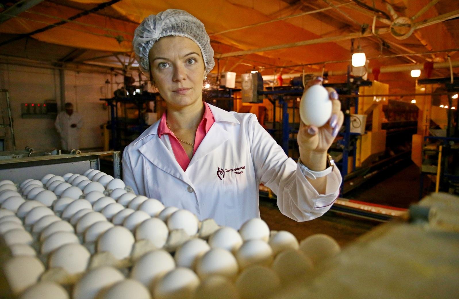 Ученые: Употребление яиц может продлить жизнь человека
