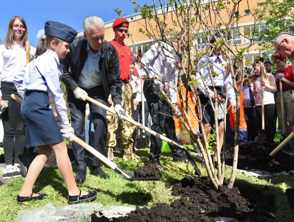 Мэр Москвы вместе с ветеранами высадил кусты сирени на территории Екатерининского парка