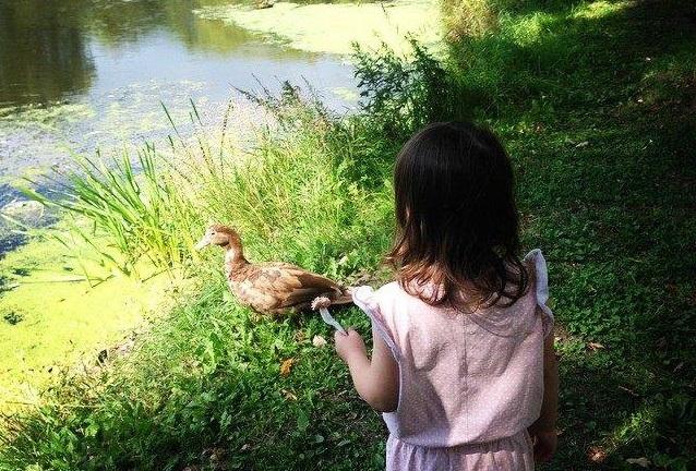 Природа и дети: участник фотоконкурса сайта газеты «Новые округа» опубликовал снимок