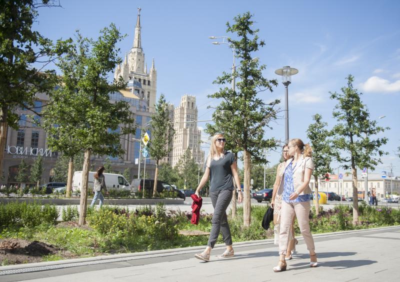 Деревья в Москве впервые обработали инновационным активатором роста
