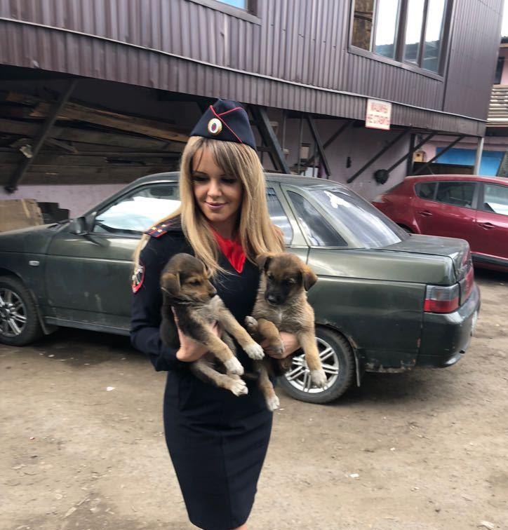Полицейские УВД по ТиНАО спасли маленьких щенят