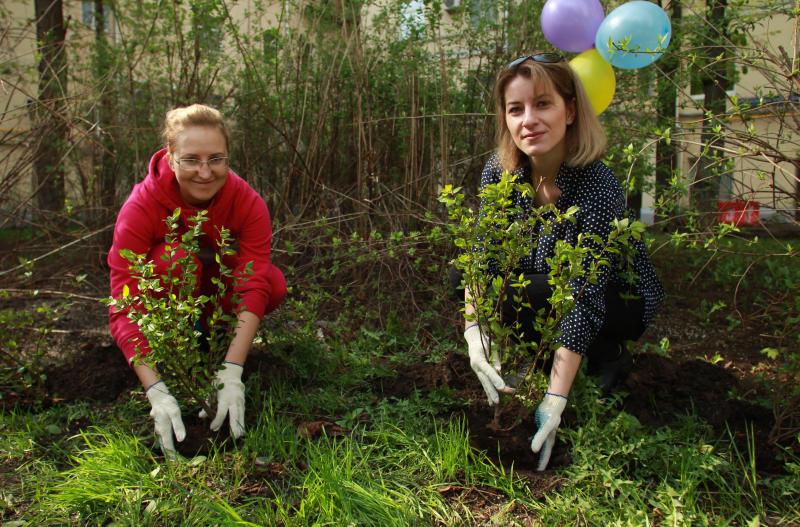 В Москве высадили 330 тысяч деревьев и кустарников