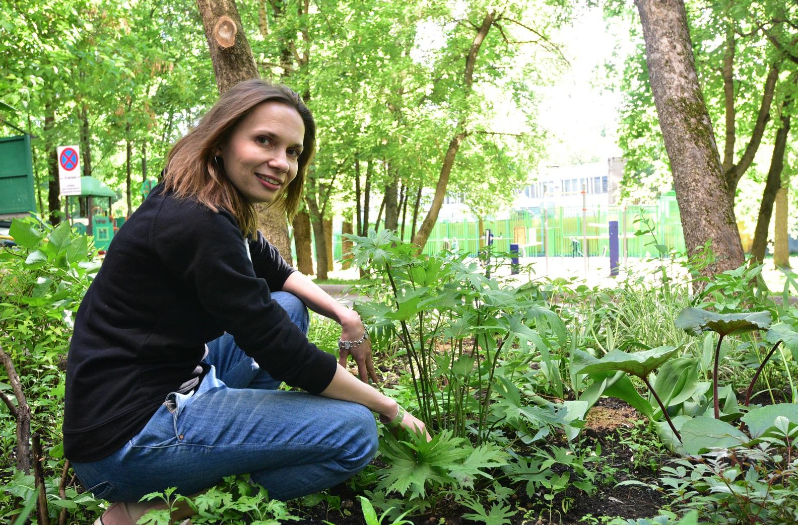 В Москве начали обработку деревьев от вредителей
