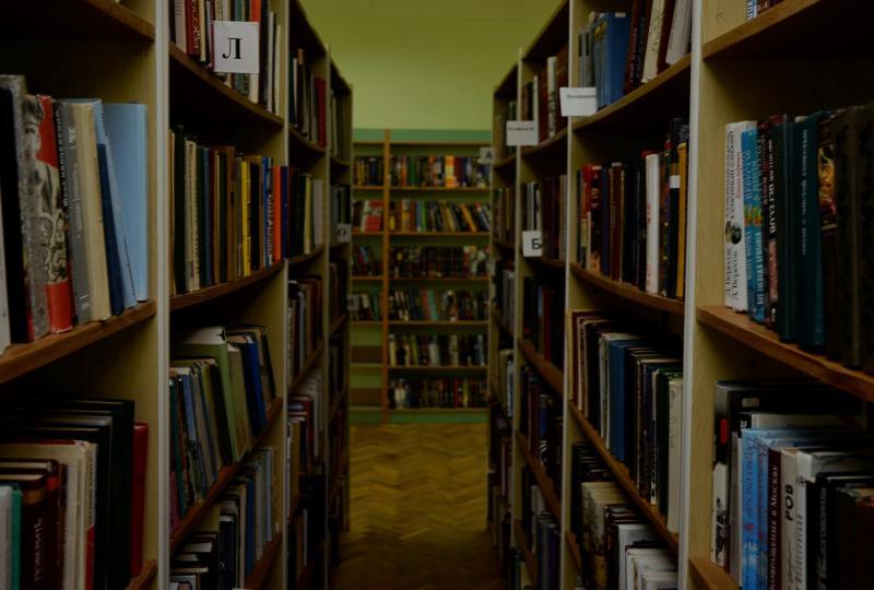 Библиотеки Новой Москвы поучаствовали в фестивале книг «Красная площадь». Фото: архив