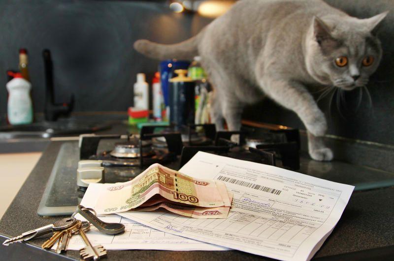 Новые тарифы за жилищно-коммунальные услуги ввели в Москве