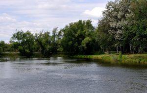Территория вокруг усадьбы Троицкое. Фото: Мария Иванова
