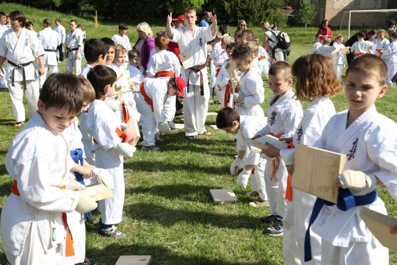 Каратисты из Щербинки завершили летнюю спортивную программу. Фото: архив