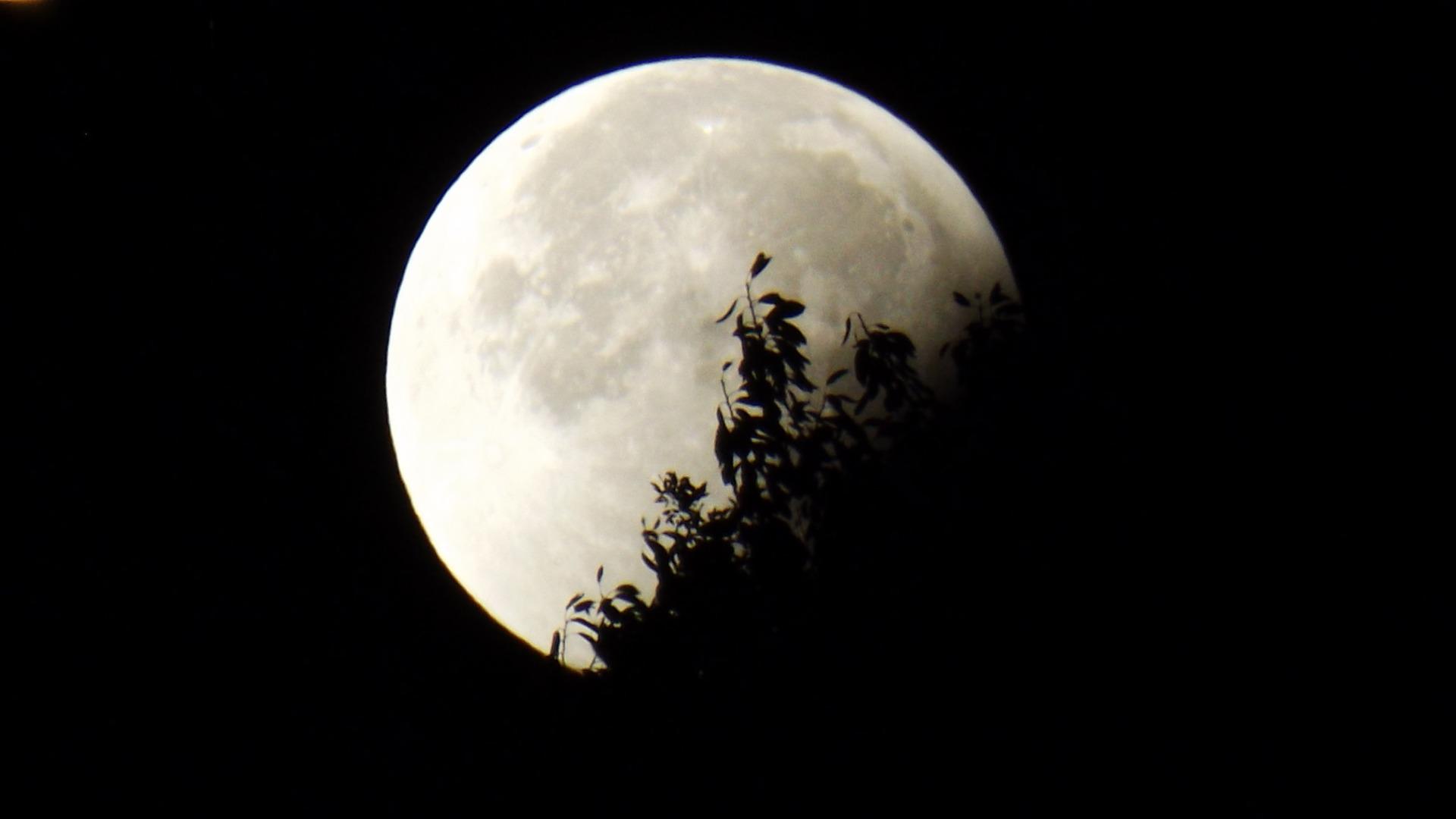 Москвичи увидят уникальное полное затмение Луны