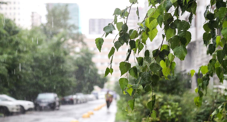 Жара в Москве начнет спадать со среды, но дожди сохранятся