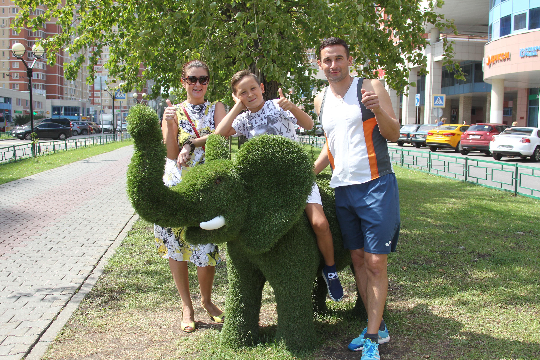 Стоп-кадр: Слоненок помогает прославиться