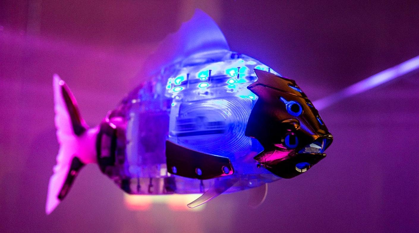 Гигантский аквариум с механическими лещами установили в Москве