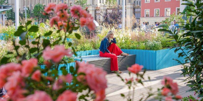 Конкурс любительских цветников проведут в Новой Москве