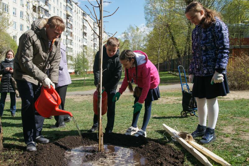 Полив зеленых насаждений провели в деревне Яковлевское