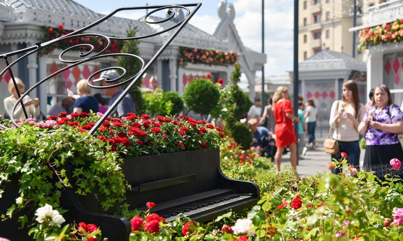 Осенью Москву украсят более 500 тысяч цветов