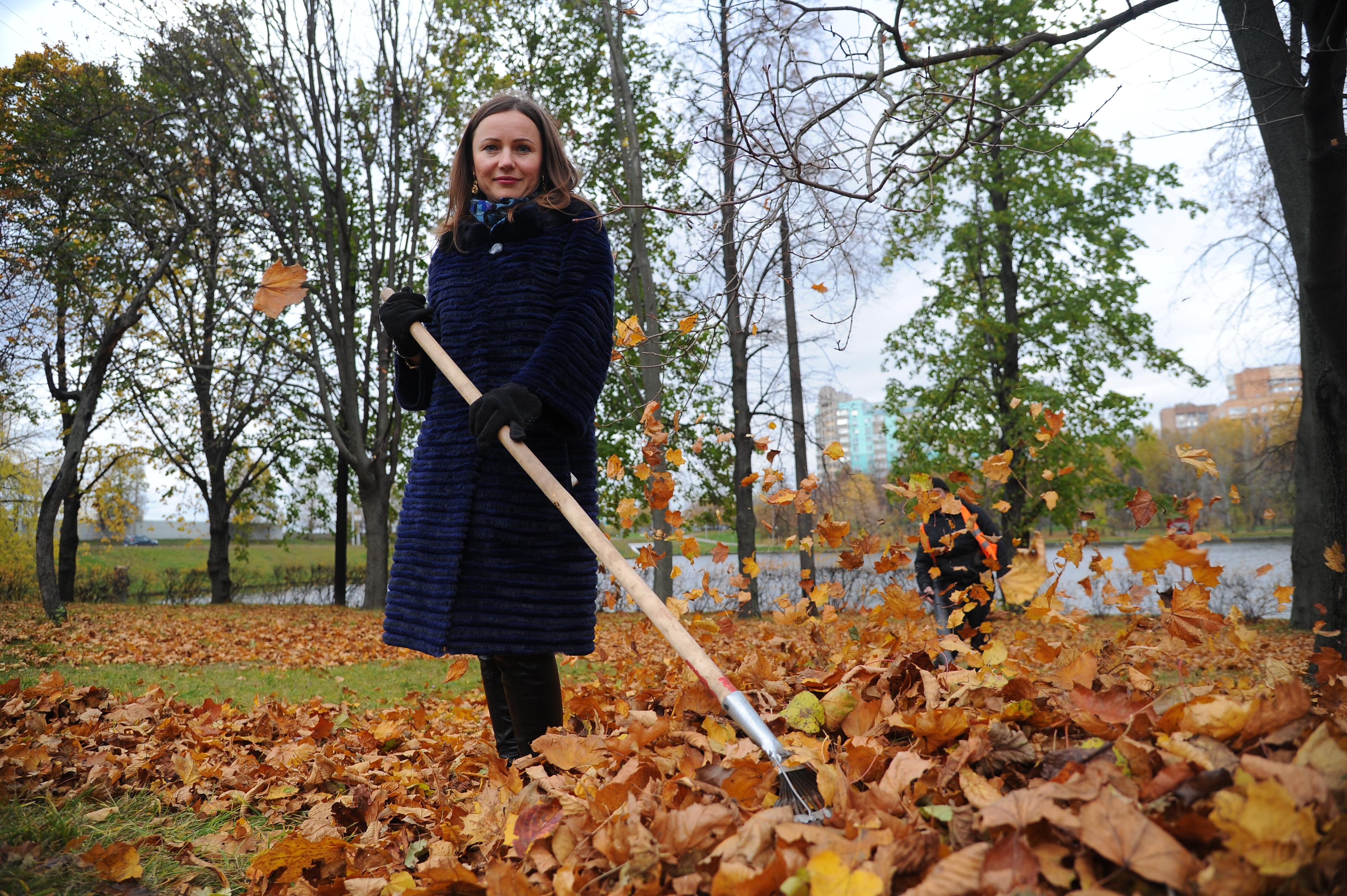 Жители столицы определят время уборки листьев во дворах