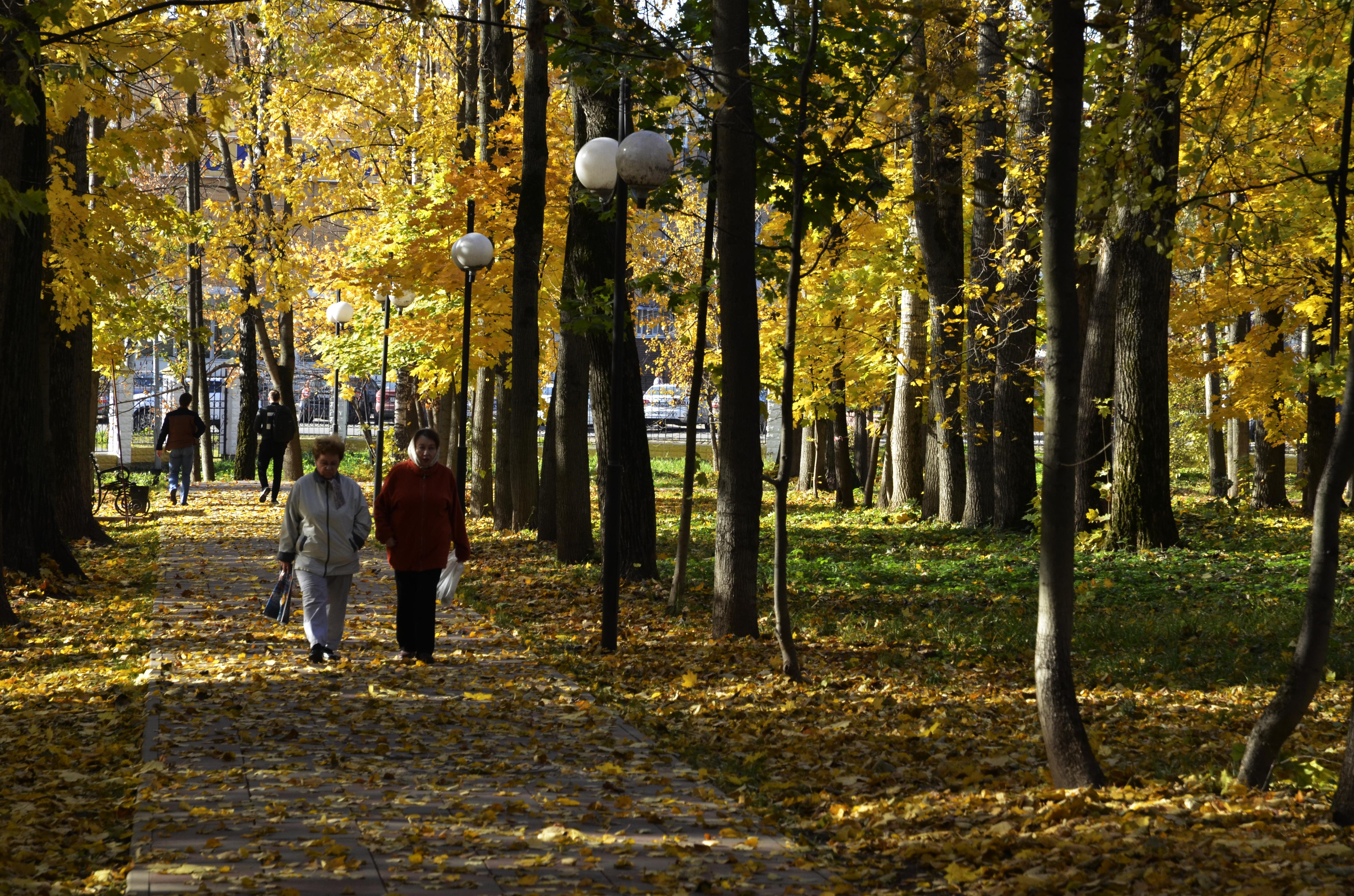 Около 150 квадратных метров тротуара обновят в Десеновском. Фото: архив, «Вечерняя Москва»
