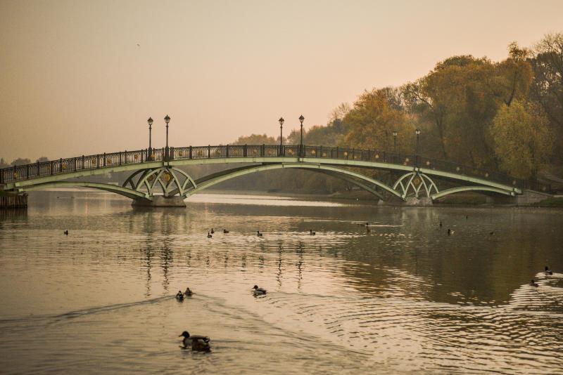 Температура в Москве упадет до минусовых значений