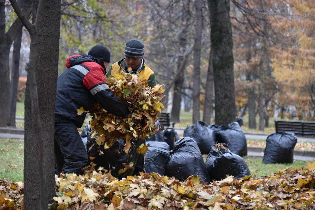 Сотрудники администрации Десеновского подвели итоги начала осеннего сезона